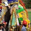 Der Elefant, der später den ersten Preis für die beste Dekoration erhalten sollte