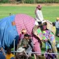 Laxmi, eine eher kleine Elefantendame in Jeans